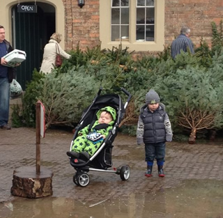 I'm not sure either boys were as IN to tree shopping as me last year...